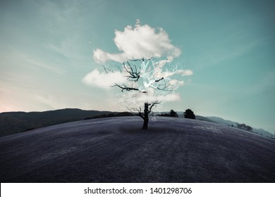 Dry trees and clouds like leaves on a purple grass. Imagine and surreal concepts.
