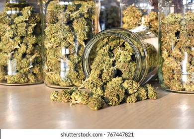 Dry and trimmed cannabis buds stored in a glas jars. Medical cannabis.
