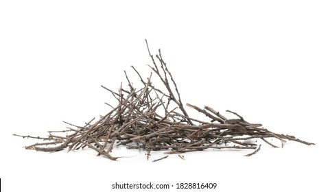 Dry twigs, branches isolated on white background