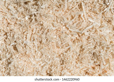 Dry wood shavings background. Wood dust texture. Sawdust pattern closeup. Sawdust floor texture. Top view. Fresh Sawdust close up . Wood industry concept. Eco energy design. Copy space