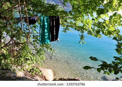Drying clothes on the branch. Location: Europe, Austria, Attersee