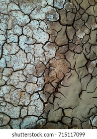drying cracked soil near the mud