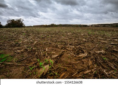 Drying crops at the end of season