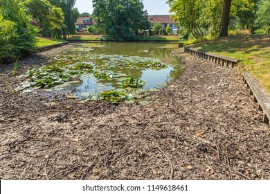 Drying european city pond in  summer period