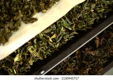 Drying and fermentation of tea willow.