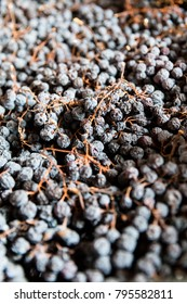 Drying grapes for Amarone and Recioto wines in Valpolicella, Italy
