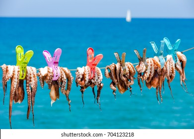 Drying the octopus in the sun in the seaside village of Plaka on the island of Crete in Greece