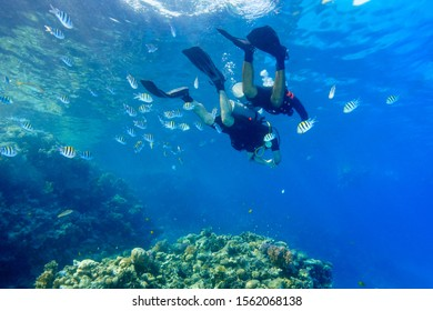 DSD Scuba Diving the Red Sea, Egypt.