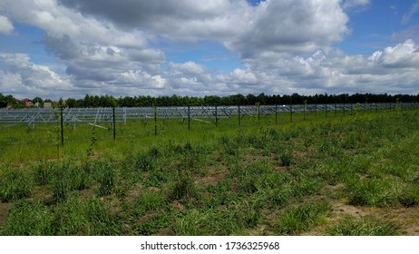 Dual land use. Construction phase of a solar park in The Netherlands in such a manner that it permits grazing or other farming activities