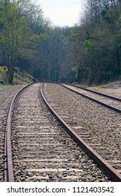 Dual train tracks leading into a deep forest and on to an unknown destination and journey's end