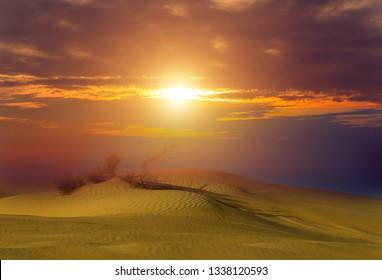 Dubai Amazing sand desert sunset Colorful view, UAE