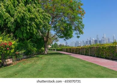 Dubai city park view