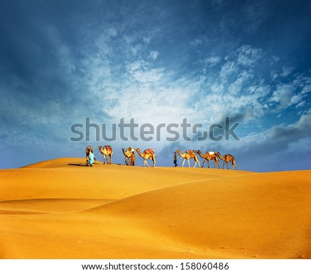Dubai desert camel safari. Arab culture, tradition and tourism landscape. Arabian people traveling on sand dunes journey background