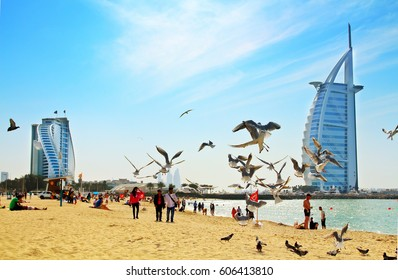 DUBAI - JANUARY 28, 2017: Jumeirah public beach near Burj Al Arab the luxury Dubai hotel and Jumeirah hotel. Daytime view. Sandy beach with the sea and flying seagulls.