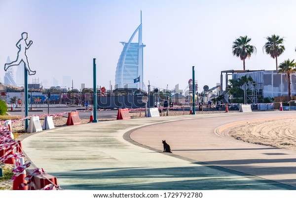 Dubai, UAE. 05/09/2020, A black cat is seen on an sealed empty public beach in Dubai as a symbolic illustration of the badly hit tourist industry as a result of the Covid-19 world wide pandemic.