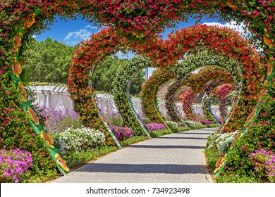 DUBAI, UAE - APRIL 20, 2017: Miracle garden is the world's largest natural flower garden, opened in 2013.