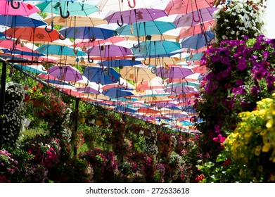 DUBAI, UAE - APRIL 23 :Park alley with many umbrellas on April , 2015. Dubai Miracle Garden in the UAE