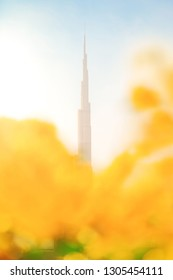 DUBAI, UAE, JAN 19, 2019: Bright colorful view of Burj Khalifa with defocused yellow flowers in the foreground. Worlds tallest building
