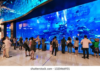DUBAI, UAE - JAN 20, 2019: Dubai mall with its famous big aquarium with sharks and rays, peolpe spectating.