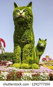 Dubai, UAE - Jan 23, 2019: Cats in The Miracle garden in Dubai, United Arab Emirates.