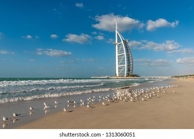 Dubai, UAE - January 21, 2019: Beautiful sandy beach with seagulls on the background of the Burj Al Arab Hotel.