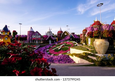 DUBAI, UAE - March, 2019: Dubai miracle garden with over 45 million flowers of petunia in a sunny day in spring, United Arab Emirates