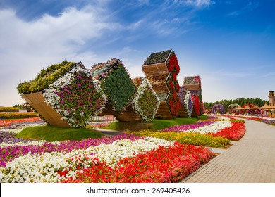 DUBAI, UAE - MARCH 28:  Cubes in Dubai Miracle Garden in the UAE on March 28, 2015. It has over 45 million flowers.