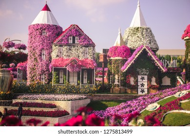 DUBAI, UAE - NOV 18, 2018: Flowers at the Miracle Garden in Dubai. United Arab Emirates, Middle East