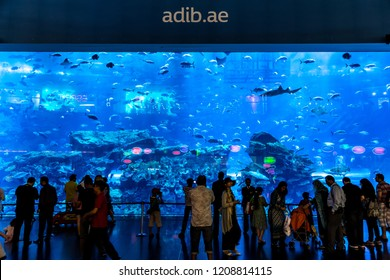 DUBAI, UAE - NOVEMBER 14, 2012:  Aquarium in Dubai Mall  in Dubai, United Arab Emirates