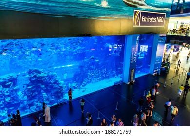 DUBAI, UAE - NOVEMBER 14: Aquarium in Dubai Mall - world's largest shopping mall , Downtown Burj Dubai November 14, 2012 in Dubai, United Arab Emirates