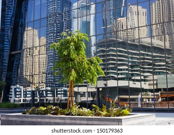 DUBAI, UAE - NOVEMBER 16: Modern buildings in Dubai Marina, on November 16, 2012, Dubai, UAE. Dubai was the fastest developing city in the world between 2002 and 2008.