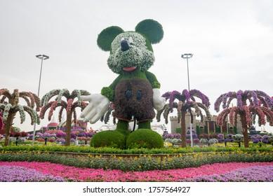 DUBAI, UAE - NOVEMBER 20, 2019: Miracle Gardens on November 20, 2019, Mickey Mouse made of flowers in Dubai, United Arab Emirates