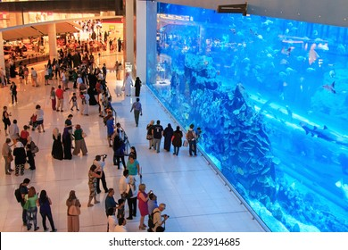 DUBAI, UAE - October 07, 2014 : Aquarium in Dubai Mall - world's largest shopping mall , Downtown Burj Dubai in Dubai, United Arab Emirates. People enjoying the beautiful view.