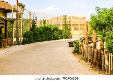 Dubai, United Arab Emirates -01/08/2018 - Beautiful Lush green view of Dubai Safari Park zoological garden in Al Warqa and Dubai Zoo background, home to the most diverse array of animals in Dubai, UAE