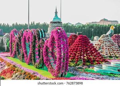 Dubai, United Arab Emirates - 03/10/2017 - Miracle Garden Dubai, Flower Garden in Dubai