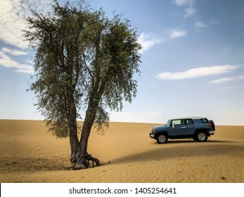 Dubai, United Arab Emirates - 05/19/2019: A Toyota FJ Cruiser 4x4 in the Dubai desert underneath a lone tree and a brilliant blue sky.