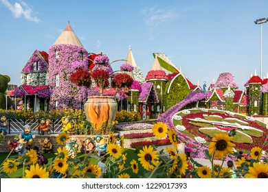 Dubai, United Arab Emirates - 10/11/2018 - Beautiful Flourish Landscape of Miracle Garden with over 45 million flowers in a sunny day, Flower Garden in Dubai, UAE