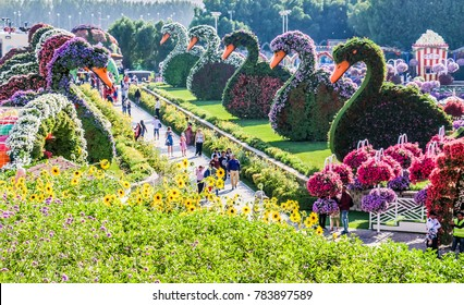 Dubai, United Arab Emirates - 12/28/2017 - Beautiful Flourish Duck and Flower Landscape Miracle Flower Garden with over 45 million flowers in a sunny day, Dubai, UAE