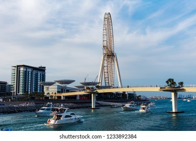 Dubai, United Arab Emirates - November 16, 2018: Ain Dubai ferris wheel and Bluewaters island newly opened leisure and travel spot in Dubai view from the bridge