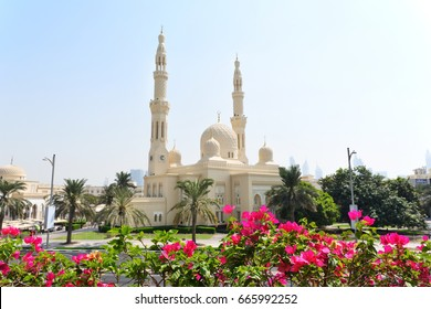 DUBAI, UNITED ARAB EMIRATES - Oct 8, 2016: Jumeirah grand mosque in Dubai,The Jumeirah Mosque is the only mosque in Dubai that is open to the public and the largest mosque in Dubai