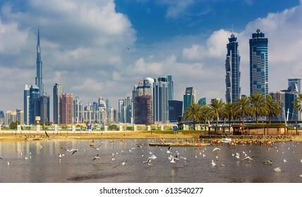 DUBAI ,UNITED ARAB EMIRATES-FEBRUARY 21, 2017: Dubai skyline and lake in the Safa park,United Arab Emirates