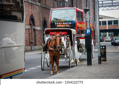 DUBLIN, IRELAND - JUNE 19, 2008: Open top sightseeing tour bus and horse carriage on street near The Guinness Brewery in Dublin, Ireland on June 19, 2008.