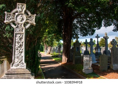 DUBLIN.IRELAND - September 13 , 2017: The tombstone with a cross on the grave on the Glasnevin cemetery.