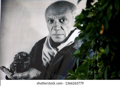 DUBROVNIK, CROATIA - AUGUST 24, 2016: Black and white poster with Pablo Picasso portrait and green tree at Picasso exhibition hall, Dubrovnik, Croatia.