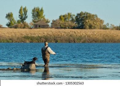 A duck hunter and his hunting dog on a wetland in North Dakota