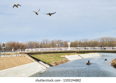 The ducks flying over the pedestrian bridge upon Danube river in Vukovar, Croatia