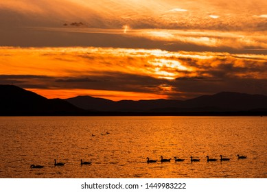 Ducks in the lake at sunset mountains background