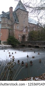ducks on a frozen moat around castle winter