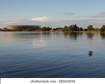 Ducks on the Swan River and the Perth Stadium, Western Australia
