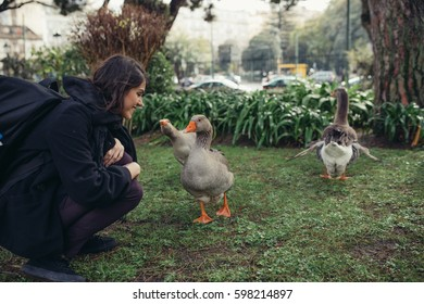 Ducks in a pond on bright spring or summer day in one of the  Lisbon botanical gardens in Portugal.Woman visiting Lisbon botanical park.Natural habitat, animal conservation and protection concept